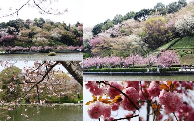 2014_04_121.jpg